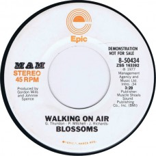 BLOSSOMS Walking On Air | Stereo/Mono (Epic 50434) USA 1977 Promo cs 45