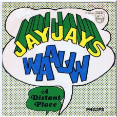 JAY JAYS Waauw / A Distant Place (Philips JF 333607) Holland 1966 PS 45