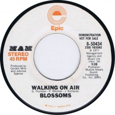 BLOSSOMS Walking On Air stereo/mono (Epic 8-50434) USA 1977 promo 45