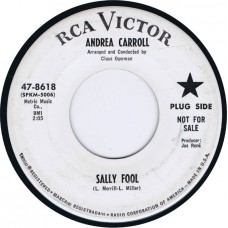 ANDREA CARROLL Sally Fool / Mr. Music Man (RCA 47-8618) USA 1966 promo cs 45