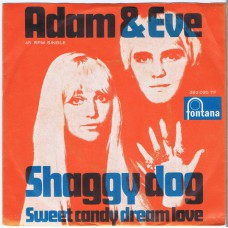 ADAM & EVE Shaggy Dog / Sweet Candy Dream Love (Fontana 262 020) Holland 1968 PS 45
