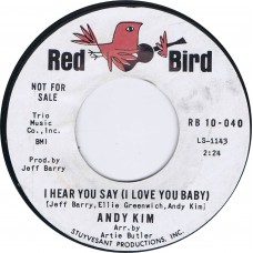 ANDY KIM Hear You Say (I Love You Baby) | Falling In Love (Red Bird RB 10-040) USA 1965 promo 45