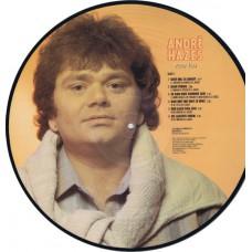"""ANDRÉ HAZES Voor Jou (EMI 1A K068-1270201) Holland 1983 12"""" Picture Disc LP"""