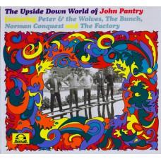 Various THE UPSIDE DOWN WORLD OF JOHN PANTRY (Tenth Planet TP 040) UK 1999 LP