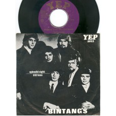 BINTANGS Splendid Sight / $60 Boss (YEP 1012) Holland 1966 PS 45