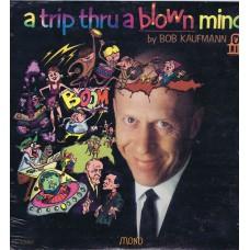BOB KAUFMANN A Trip Thru A Blown Mind (LHI) USA 1967 Mono LP (Lee Hazlewood)